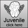 Juvenile design